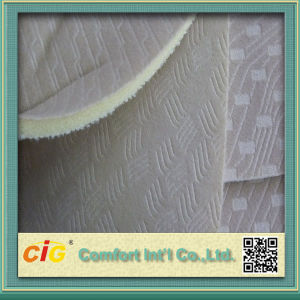 High Quality Colorful Sponge Bonding Fabric pictures & photos