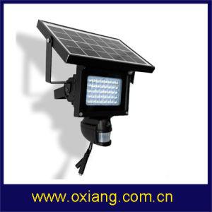 Wireless PIR IP Camera Solar PIR Sensor Light Camera pictures & photos
