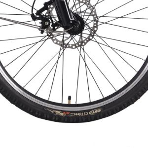 New Classic Disc Brake Electric Mountain Bike pictures & photos