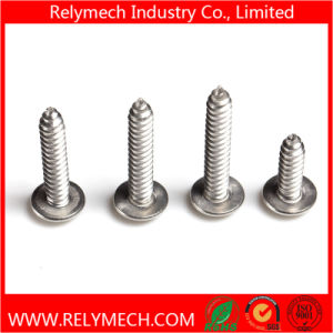 Phillips Truss Head Self-Tapping Screw in Stainless Steel 304 pictures & photos