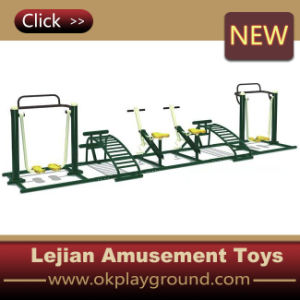 CE Safety Outdoor Fitness Equipment (12171C) pictures & photos