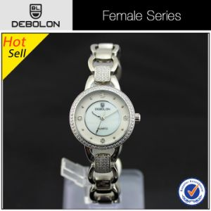 Stainless Steel Bracelet Japan PC21 Watch