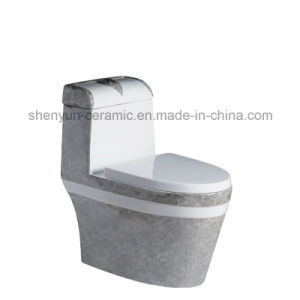 Ceramic One-Piece Toilet Siphonic Flushing S-Trap Color Toilet (A-006) pictures & photos