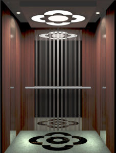 630kg High Building Passenger Elevator Lift for 4 Passngers pictures & photos