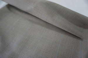 Plain Colors Wool Fabric Suiting Fabric pictures & photos