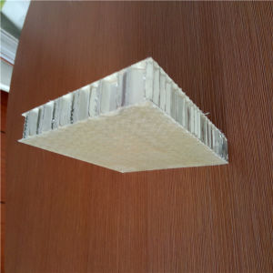 GRP FRP Honeycomb Panel pictures & photos