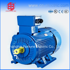 High Efficiency Squirrel Cage Induction Motor pictures & photos