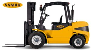 Diesel Forklift 4.0-5.0ton CE Certified pictures & photos