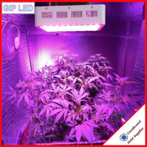 Wholesale 1200W LED Grow Lights for Microgreens pictures & photos