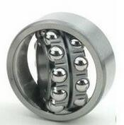 Self-Aligning Ball Bearing SKF Tdgs1215k pictures & photos
