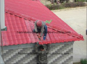 Asa Coated Synthetic Resin Roof Panel pictures & photos