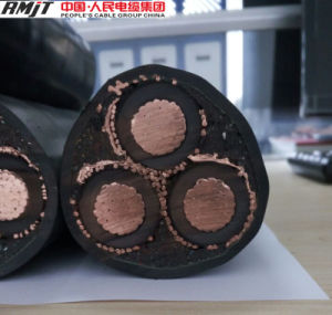 XLPE Insulated Copper Conductor Power Cable YJV YJV22 YJV32 Cable pictures & photos