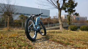 Comfortable Lithium Electric Bike with Fat Tire pictures & photos