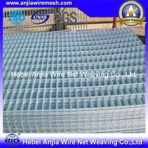 Galvanized Welded Wire Mesh for Fencing and Building pictures & photos