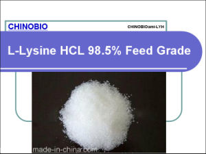 Feed Grade L-Lysine HCl for Animal and Poultry Feed