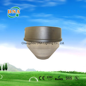 Ceiling Light Induction Lamp
