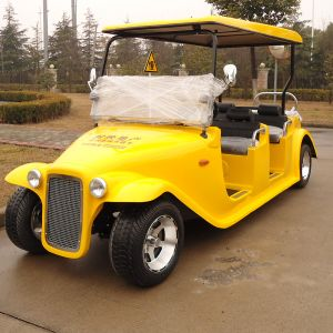 CE Approve Custom Electric Collector Cars (DN-6D) pictures & photos