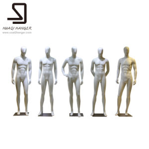 Fiberglass Male Mannequins, Headless Mannequins, Man′s Dummy pictures & photos