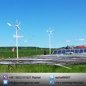 400W off Grid Small Wind Turbine Generator Power Supply System pictures & photos