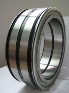 Double Seal Double-Row Full Complement Cylindrical Roller Bearings