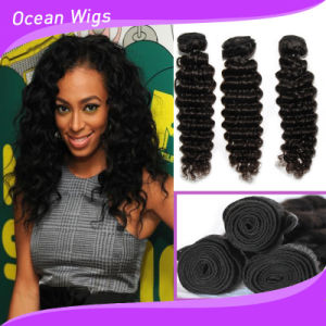 Top Quality Malaysian Human Virgin Remy Hair Weft (W-059b) pictures & photos