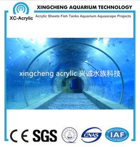 Oceanarium Project Acrylic Tunnel Aquarium pictures & photos