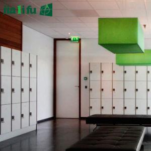 Jialifu Aluminum Frame Compact Laminate Locker pictures & photos