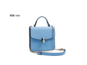 Dz011. Crocodile Grain Chain Bag Shoulder Bag Fashion Bags Women Bag Designer Handbags Leather Handbag pictures & photos