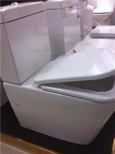 Watermark China Supplier Bathroom Washdown One Piece Ceramic Toliet (1036) pictures & photos