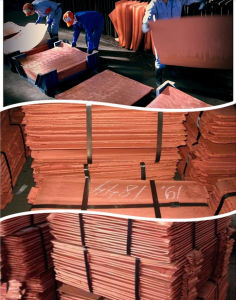 Copper 99.99 Pure/Pure Cathode Copper/Copper Cathodes Price for Sale (MP25) pictures & photos