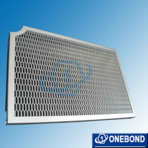 Best-Quality Aluminum Mesh Wall Panel pictures & photos