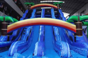 3 Lane Tropical Inflatable Water Slide Chsl644 pictures & photos