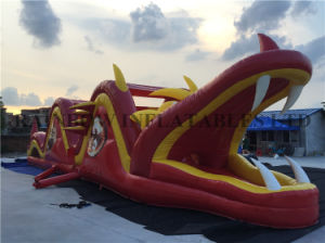 Inflatable Dragon Obstacle Course for Kids pictures & photos