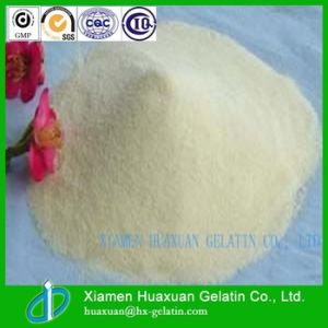 Hot Selling China Supplier Fish Gelatin pictures & photos