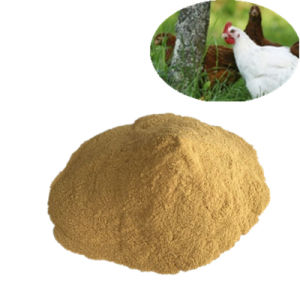 China Supplier Yeast Powder 50% /60% Feed Grade pictures & photos