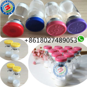 Pure Peptides PT-141 / PT 141 White Lyophilized Powder