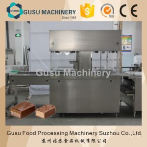 Ce Certified Gusu Chocolate Enrobing Machine (TYJ800) pictures & photos