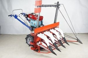 Power Reaper for Rice and Wheat pictures & photos