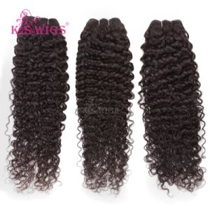 Remy Hair Jerry Curly Hair Weft pictures & photos
