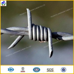 High Tensile Barbed Wire Manufacturer pictures & photos