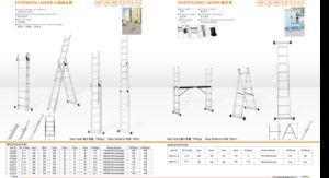 Extension Ladder and Scaffolding Ladders pictures & photos