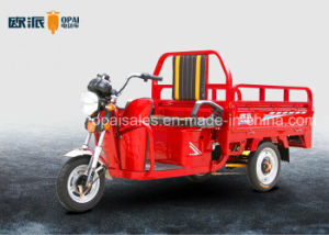 Electric Cargo Trike 1.6m Hopper E-Tricycle 60V 30ah~45ah pictures & photos