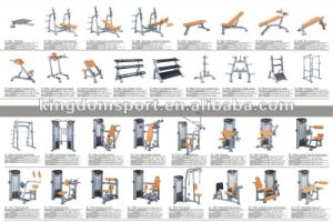 Fitness Equipment /Bodybuilding/Gym Equipment/ Commercial Smith Machine pictures & photos