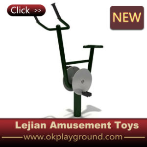 Ce Golden Suppiler High Quality Outdoor Fitness Equipment (LJ-028) pictures & photos