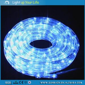 LED Flat Rope Light pictures & photos