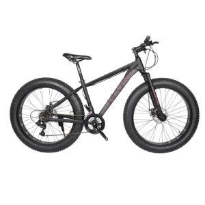 Fat Tire Cruiser All Terrain Bike pictures & photos