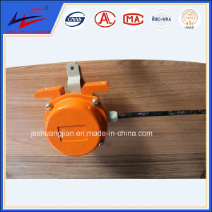 Hot Sale Conveyor Deviation Switch Wholesale pictures & photos