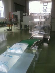 Automatic Big Bag Water Filling Machine pictures & photos