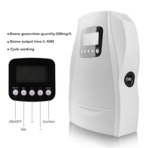 110/220V 500mg/H Ozone Generator Air Water Purifier with Cycle Working pictures & photos