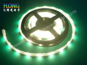 High Brightness 5050 SMD Chips LED Strip Light pictures & photos